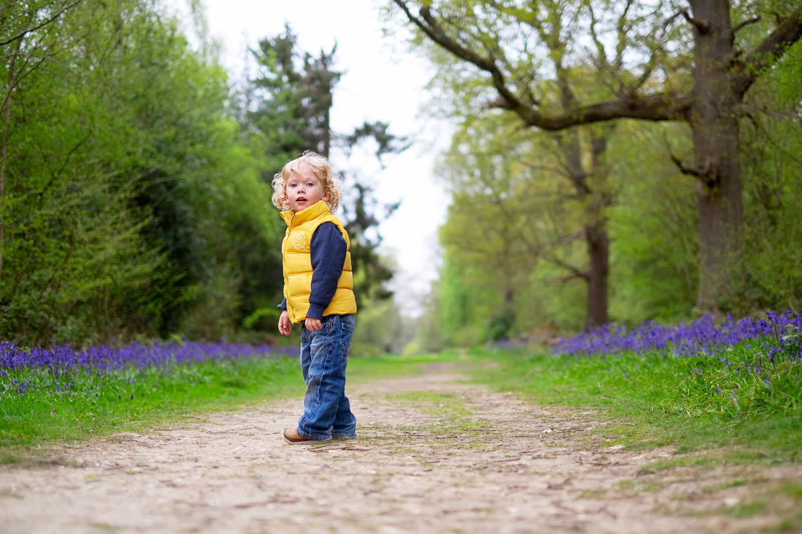 Spring bluebell mini sessions in Sussex